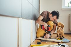 Équipez et son chien effectuant le travail de rénovation à la maison Photo stock