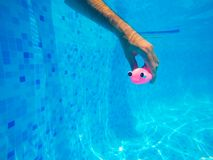 Équipez jouer avec le jouet en caoutchouc générique de poissons dans la piscine Photos libres de droits