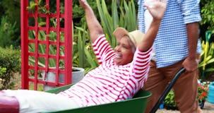Équipez la femme supérieure heureuse de transport dans la brouette de roue banque de vidéos