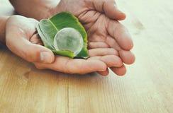 équipez la main tenant le petit globe de la terre et la feuille verte, concept de jour de terre concpet de donner et de santé Photo libre de droits