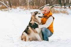 Équipez la marche avec l'horaire d'hiver de chien avec la neige dans l'amitié de Malamute et de chiens de traîneau de forêt Photographie stock