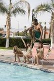 Équipez la plongée dans la piscine Photo libre de droits