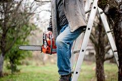 Équipez le bois de coupe des arbres montant une échelle Images libres de droits