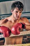 Équipez le gymnase de formation enfermant dans une boîte l'art martial mélangé de boxe d'ombre d'anneau de Muttahida Majlis-e-Ama image stock
