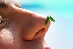 Équipez le vegan avec la chenille sur le nez, amour aux animaux, mode de vie sain, amusement Photo libre de droits