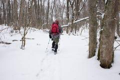 Équipez le voyageur avec la détente de sac à dos extérieure dans la forêt pendant Photos stock