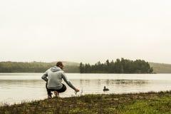 Équipez les canards de alimentation de observation se tenant au lac de l'atmosphère grise de matin de Canada d'Ontario de parc na Photo libre de droits