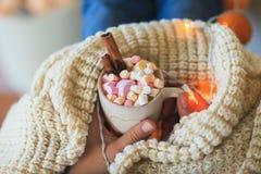 Équipez les mains tenant la tasse de chocolat chaud avec des guimauves Image libre de droits