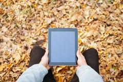 Équipez les mains tenant le comprimé au-dessus du fond de feuilles d'automne Image stock