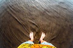 Équipez les pieds sur la plage sablonneuse de l'eau, effet de fisheye, vue supérieure photos stock