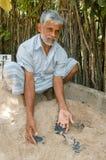 Équipez qui traite des tortues de bébé à la ferme d'élevage de tortue Photographie stock