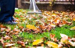 Équipez rassembler les feuilles d'automne tombées dans la cour image stock
