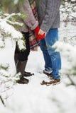 Équipez tenir la main de l'amie dans la forêt Photographie stock