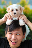 Équipez tenir le chiot maltais mignon sur sa tête Photographie stock libre de droits