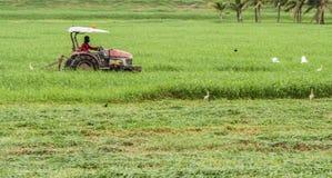 Équipez une équitation sur la faucheuse de tracteur Photo libre de droits