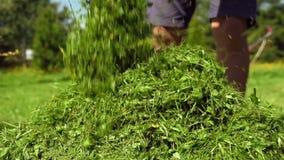 Équipez vider une boîte d'herbe d'une tondeuse à gazon banque de vidéos