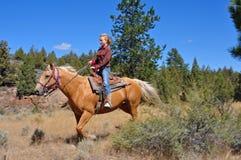 Équitation élevée de désert Images stock