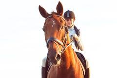 Équitation équestre d'adolescente à cheval Été vibrant  images libres de droits