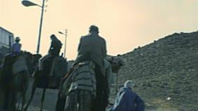Équitation archivistique de chameau de temple de vallée banque de vidéos