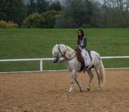 Équitation confortable Images libres de droits