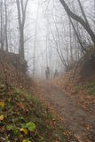 Équitation dans la forêt d'automne Images stock