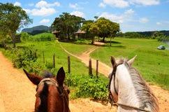 Équitation dans Viňales image libre de droits