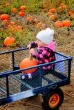 Équitation de bébé dans le chariot de correction de potiron Photographie stock libre de droits