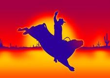 Équitation de Bull   Photos stock