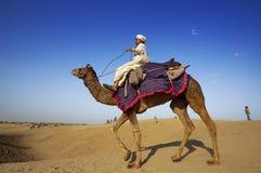 Équitation de chameau, désert de Thar Photo libre de droits