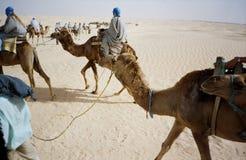 Équitation de chameau de désert. La Tunisie Image stock