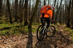 Équitation de cycliste de montagne sur le vélo dans le paysage springforest Photo libre de droits