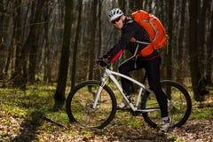 Équitation de cycliste de montagne sur le vélo dans le paysage springforest Images libres de droits