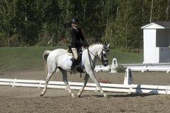 Équitation de fille Photo stock