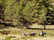 Équitation de Horesback images stock