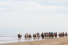 Équitation de Horeseback images libres de droits