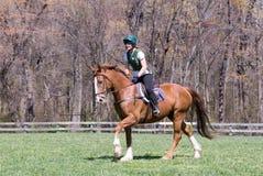 Équitation de Horseback Image stock