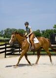 Équitation de horseback de jeune dame Photographie stock libre de droits