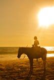 Équitation de horseback de jeune fille sur la plage au coucher du soleil images stock