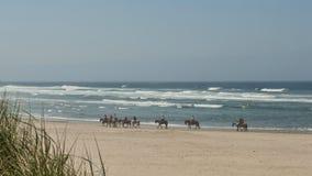 Équitation de Horseback sur la plage Photographie stock