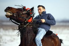 Équitation de l'hiver Photos stock
