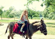 Fille sur l'âne Photos stock