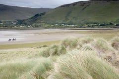 Équitation de plage de Rossbeigh, comté Kerry Photo stock