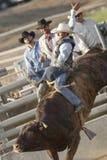 Équitation de San Dimas Bull Photos libres de droits