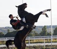 Équitation de tour Image libre de droits