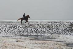 Équitation en Islande photo stock