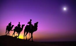 Équitation indienne indigène d'homme par le concept de chameau de désert Photographie stock libre de droits