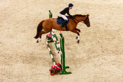 équitation montrez sauter, cheval et cavalier par-dessus le saut Images libres de droits