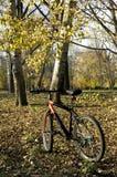 Équitation récréationnelle de bicyclette en parc de ville Image stock