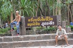 Érable, feuille, Phukradueng, Loei Photo stock