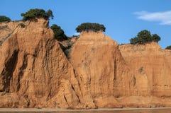 Érosion côtière de bord de la mer photographie stock libre de droits